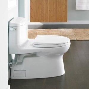 Install Toilet Installing Toilets - New Installation & Renovation